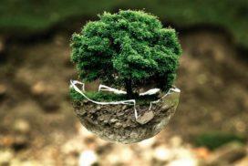 Quale ecologia, quale futuro?