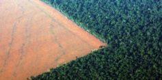 L'eccessivo sfruttamento dei terreni che accelera il cambiamento climatico
